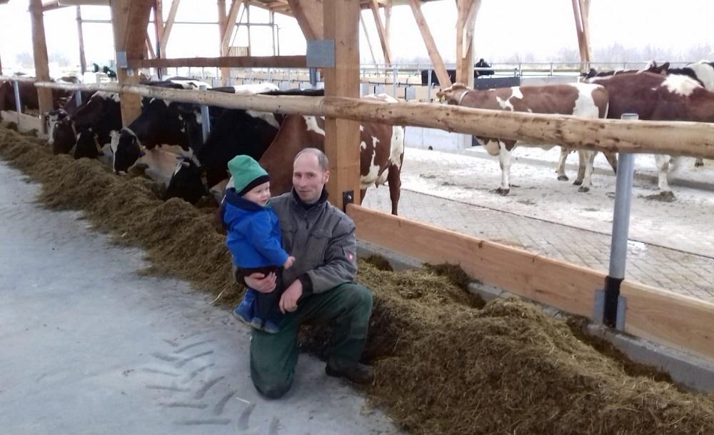 Der neue Stall - mit viel Platz für die Kühe